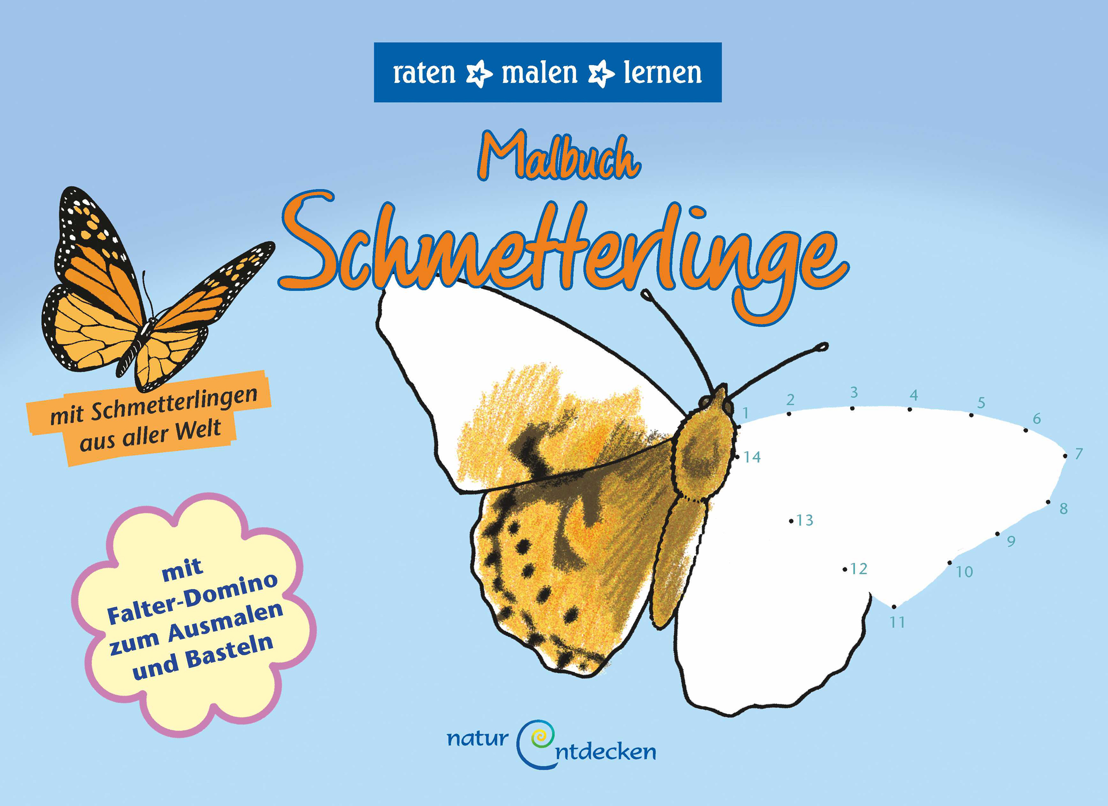 natur entdecken - Malbuch Schmetterling